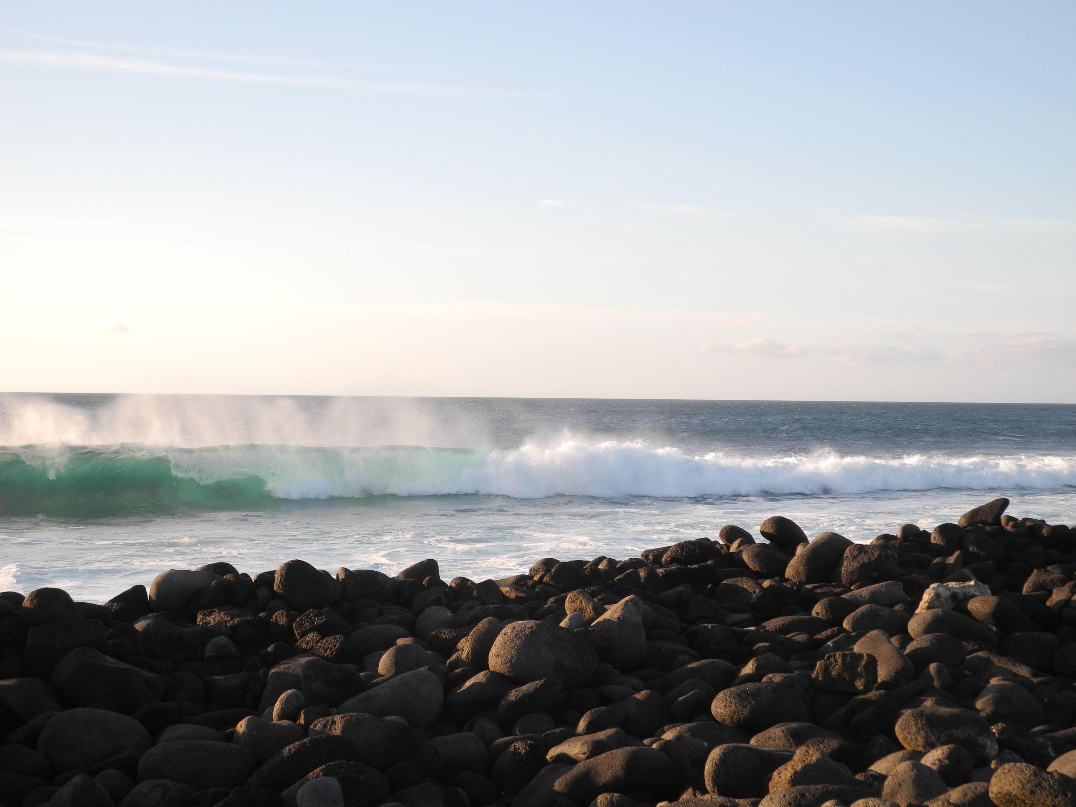 Galapagos : on fait le bilan !