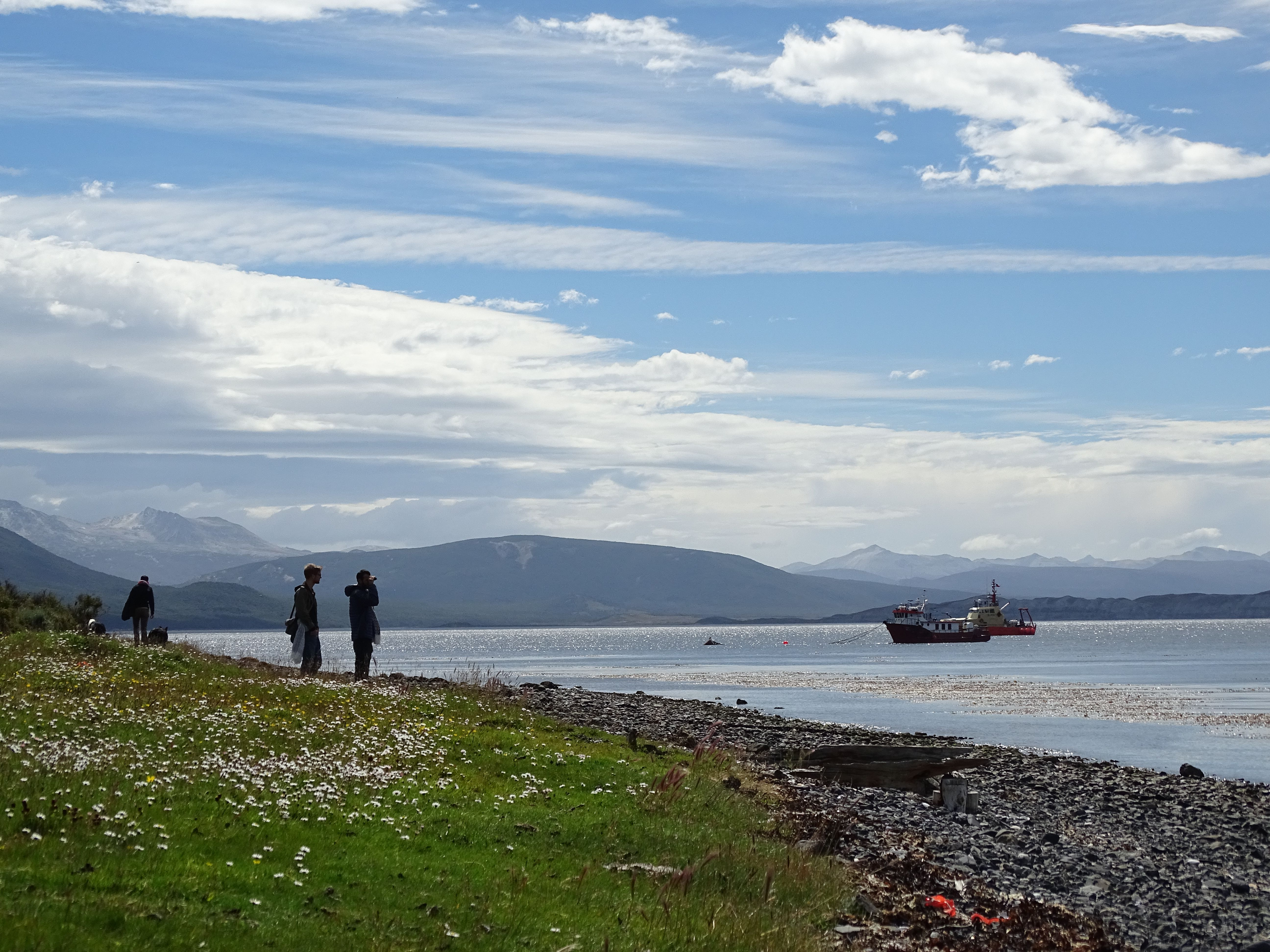 De Punta Arenas à Puerto Williams : le bout du monde !